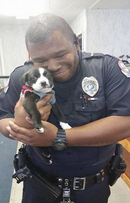 policia apaixonase por cachorrinho 1