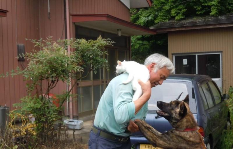 homem salva animais fukushima 6
