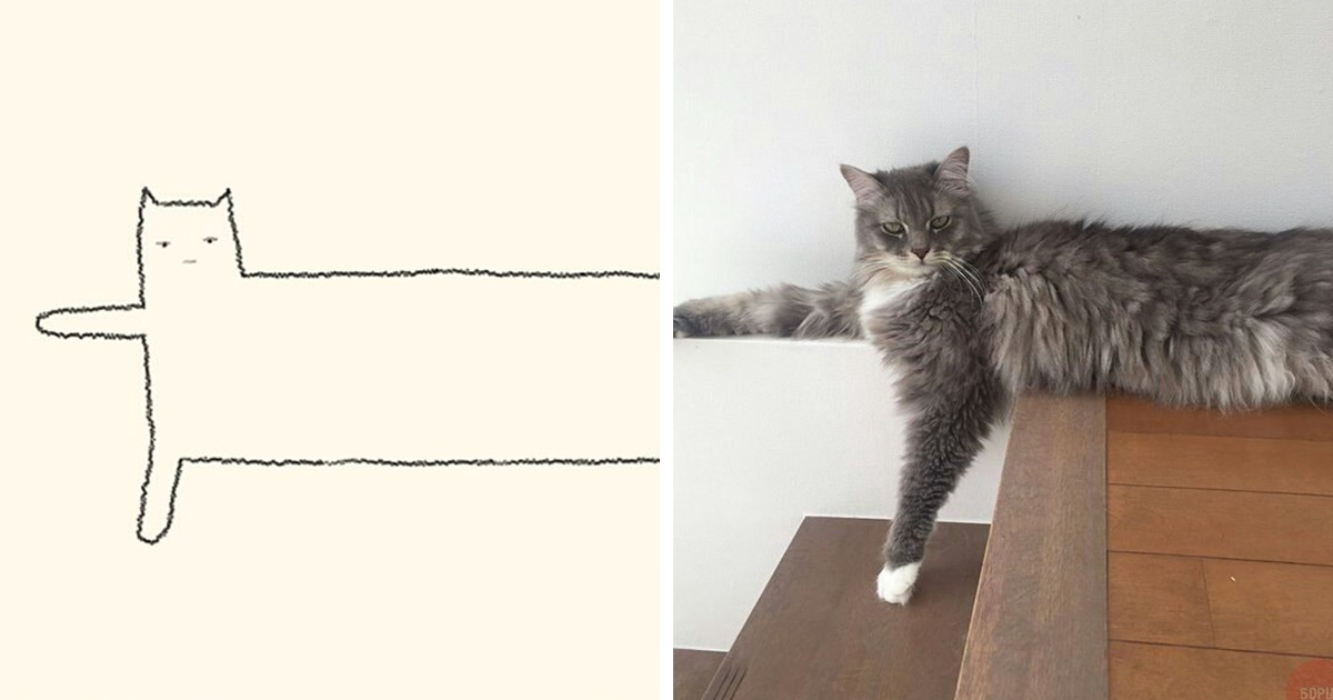 30 Desenhos De Gatos Sem Qualquer Sentido Que Fazem Rir Todo O